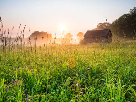 House in field at sunrise