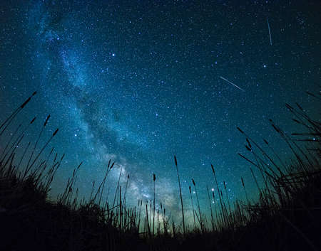 shooting stars from field