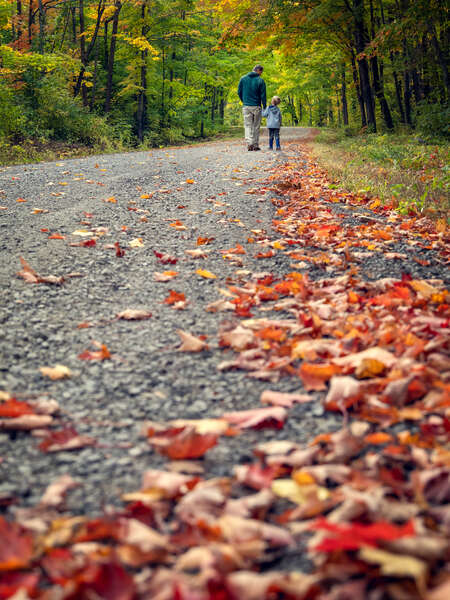 Man and Child on Autumn Road