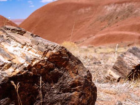 Rock in Desert